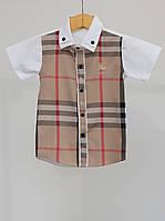 Рубашка для мальчика Burberry