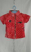 Рубашка детская  для мальчика 1-4 лет,красная, фото 1