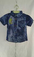 Рубашка детская  для мальчика 1-4 лет,темно синяя, фото 1