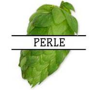 Хмель Perle (DE) 2019г - 100г