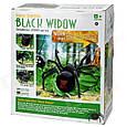 Паук на радиоуправлении 30 см   Black Widow 779, фото 7