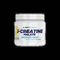 Креатин AN 3-Creatine Malate, 250 g Лимон