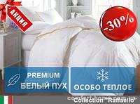 Одеяло пуховое Raffaello (Зима+) 110х140 см 063