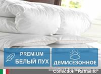 Одеяло пуховое Raffaello детское (Деми) 110х140 см 061