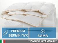 Одеяло пуховое Raffaello (Зима) 110х140 см 062