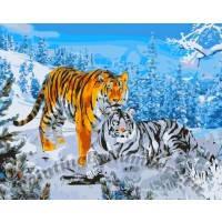 Картина раскраска по номерам на холсте 40*50см Идейка КН194 Два тигра, MG194