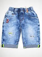 Джинсовые шорты для мальчиков Seagull оптом,98-128 pp., фото 1