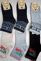 Носки шкарпетки жіночі Стиль Люкс Житомир