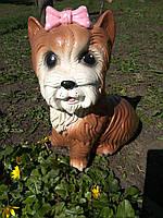 Садовая фигура собачка Йоркширский терьер