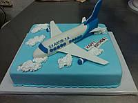 """Торт на заказ """"Самолет-7000 над землей """""""