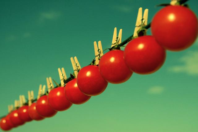 Плоды без семян - миф или реальность?