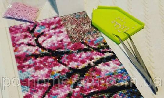 Фото набора Дрим Арт - выкладка квадратной алмазной вышивкой