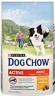 Корм для взрослых активных собак, с курицей Dog Chow Active 14 кг