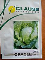 Семена капусты Оракл F1. Упаковка 2 500 семян.