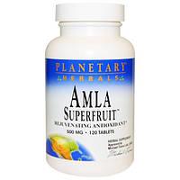 Planetary Herbals, Суперфрукт амла, омолаживающий антиоксидант, 500 мг, 120 таблеток