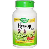 Natures Way, Иссоп, 450 мг, 100 капсул