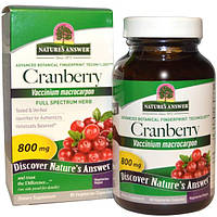 Natures Answer, Клюква, 800 мг, 90 растительных капсул