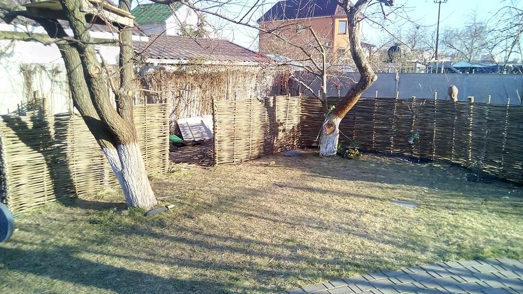 Задний двор (Плетень) 1