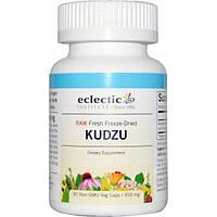 Eclectic Institute, Кудзу, 450 мг, 90 вегетарианских капсул