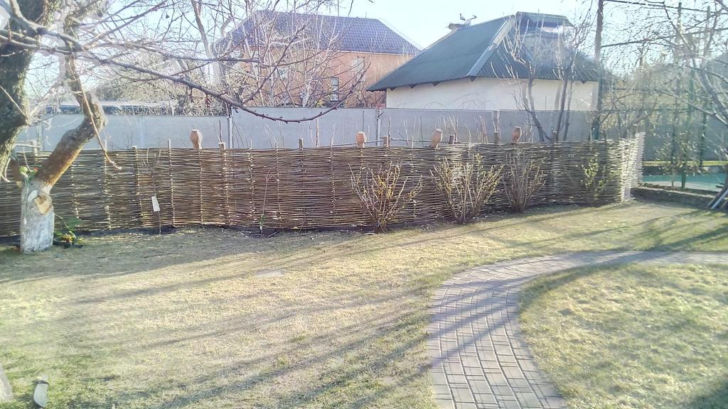 Задний двор (Плетень)