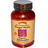 Dragon Herbs, Лимонник, 500 мг, 100 капсул на растительной основе