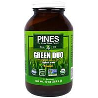 Pines International, Зеленый дуэт, порошок из люцерны и ростков пшеницы, 10 унций (280 г)