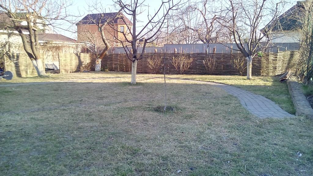 Задний двор (Плетень) 4
