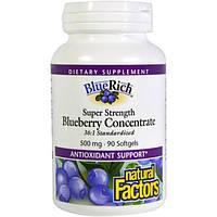 Natural Factors, BlueRich, суперсила, концентрат черники, 500 мг, 90 желатиновых капсул