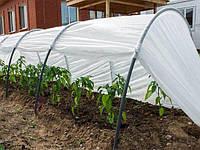 Парник Подснежник 4 метра для огорода и сада