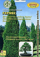 Семена Кипарис Гималайский Гермес 0,08 грамма Аэлита