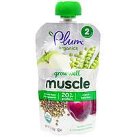 Plum Organics, Grow Well, мюсли, органическое детское питание, чечевица, слива + анона чешуйчатая, 3,5 унции (99 г)