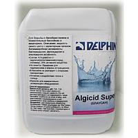 Блаусан (альгицид) 5л (для борьбы с водорослями)