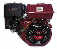 Двигатель DBS168OP (Аналог Honda GX160)