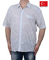 Легкая летняя мужская рубашка короткий рукав.Большого размера.Оптом.