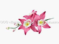 Букет из мастики - Веточка орхидей фуксия №7