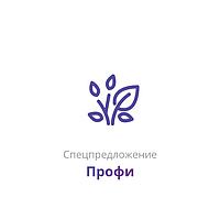 """Пакет услуг для электронной комерции """"Профи"""""""