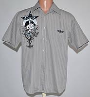 Рубашка фирмы NO FEAR (M)