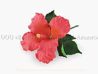 Букет из мастики - Цветок гибискуса КРАСНЫЙ - Ø120 мм, фото 1