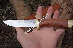 Нож охотничий  универсальный Сокол ,рукоять  из палисандра