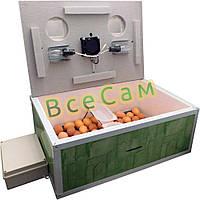 Инкубатор автоматический «Курочка Ряба» ИБ-100 с вентилятором