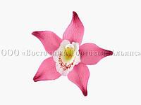 Цветы из мастики - Орхидея фуксия - Ø90 мм