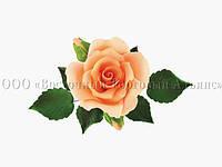 Букет из мастики - Роза с бутонами ОРАНЖЕВАЯ d-120