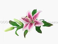 Букет из мастики - Ветка лилии РОЗОВАЯ №3