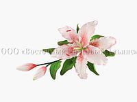 Букет из мастики - Ветка лилии ПЕРСИКОВАЯ №2