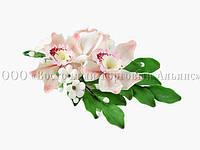 Букет из мастики - Орхидеи СВЕТЛО-РОЗОВЫЕ №19