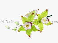 Букет из мастики - Веточка орхидей ЛИМОННАЯ №8