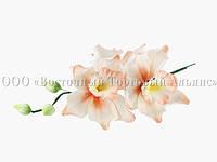 Букет из мастики - Веточка орхидей ПЕРСИКОВАЯ №6
