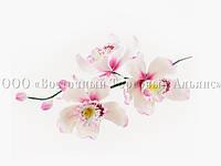 Букет из мастики - Веточка орхидеи РОЗОВЫЕ №4