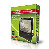 Led-прожектор Euroelectric LED SMD 100W High power 6500К