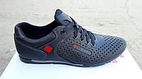 Кожаные летние кроссовки перфорация Columbia SB black N, фото 1